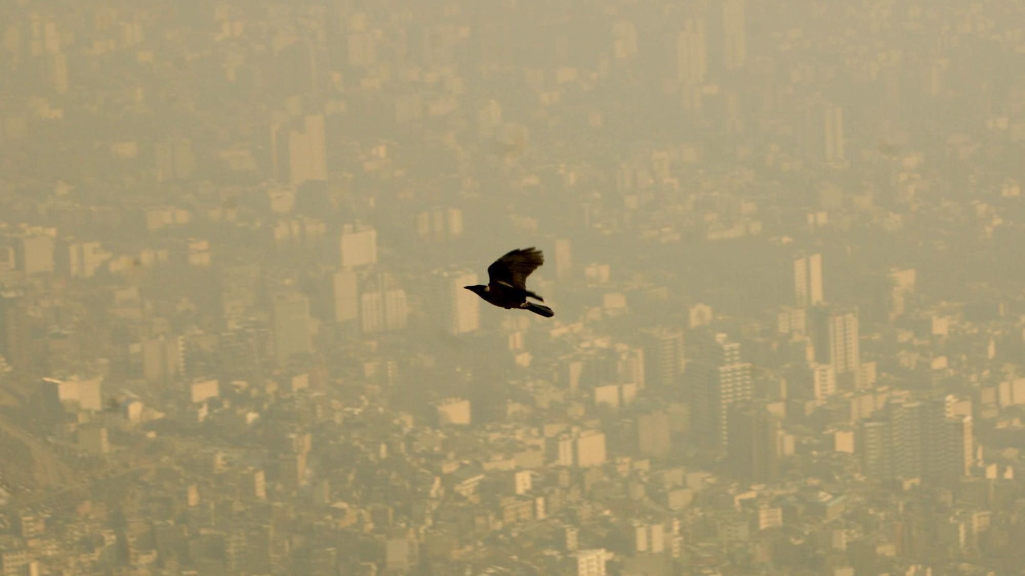 Pollution in Iran